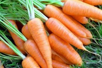 Маски из моркови для лица в домашних условиях