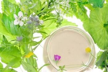 Маски из трав для лица: рецепты