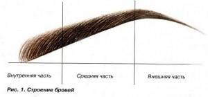 Как самой сделать коррекцию бровей