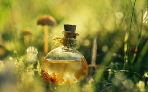 Всё, что вы хотели знать об ароматах